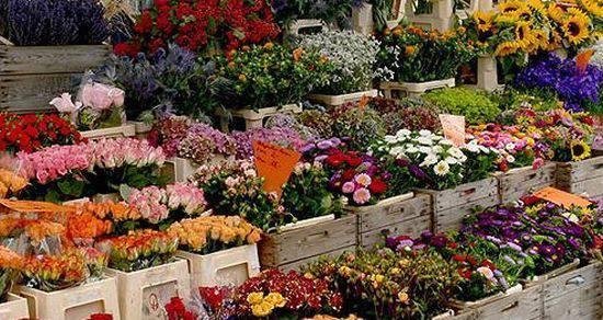Mercatino dei fiori